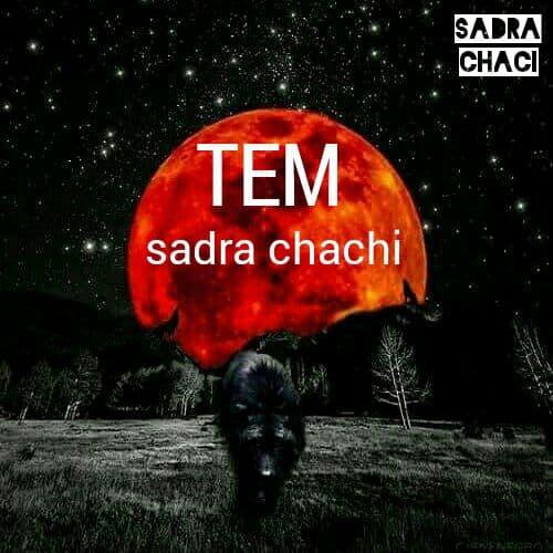 صدرا چاچی تیم